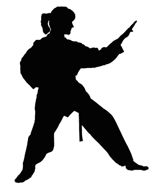 Taekwon-Do - ASIA Sport-Akademie Espelkamp